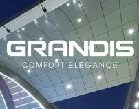 Mitsubishi's Grandis 2011