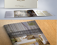 Wedding Brochure (two takes)