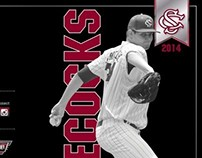 University of South Carolina Baseball Schedule Cards