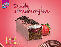 2014 Gansito Limited Edition Strawberry