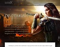 Website Design & Dev in WordPress for Mindlogicx Infra