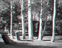 3D Trees