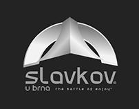 SLAVKOV CITY [ 2010 ]
