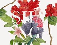 ShanghaiType 动态字体秀International Invitee 国际邀请设计师