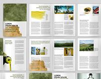 Olive Green Brochure A4