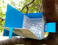 3D Zipline Invitation