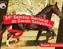 Projeto Comercial: 34ª Nacional do Cavalo Campolina