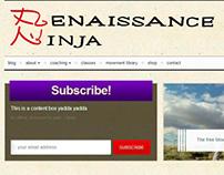 Renaissance Ninja Site Design