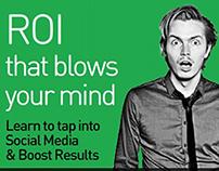 Online Ads: Lithium ROI