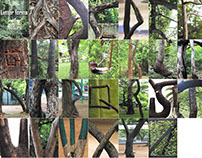 Letter art in Nature