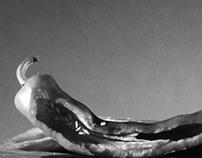 Edward Weston Emulation