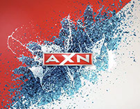 AXN Hawaii 5.0