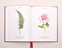 Cutting of Plant Illustrations | Rathbone Square Garden