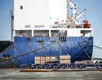 Case Study - Birkenhead Docks