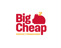 Branding & Web Design | Big cheap