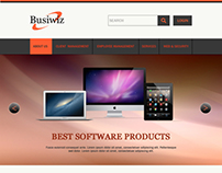 Software sales and services