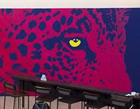 Jaguar (Panthera onca boliviensis)