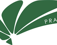 LOGO for 'PRAXIS' Brazilian Jiu-Jitsu Academy