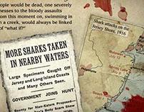 Shark Attack Diaries