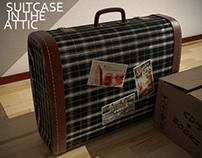Suitcase in the attic