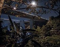 Under the Bridge - Tai Po (大埔區)