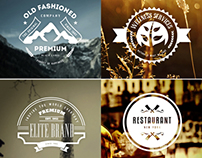 45 Vintage Labels & Badges Logos - Premium Bundle