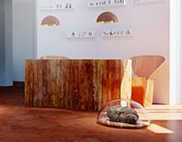 Visualizations for Petroglyph Museum in Azerbaijan