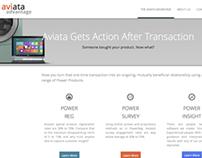 Aviata Software Development - Naming, Website