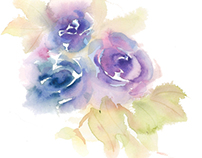 Watercolor Illustration Compilations