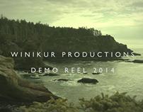 Winikur Productions Demo Reel 2014