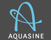 Aquasine Corporate Identity