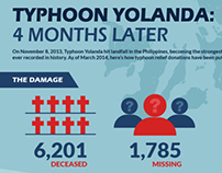 Typhoon Yolanda Donations Infographic