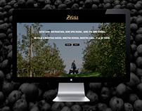 Zelaia Website