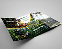 Logotipo y brochure Yupii