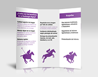 Digital radiology and ecography for horses brochure