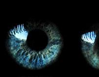 Taxonomy of Eyes