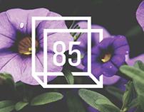 Design 85