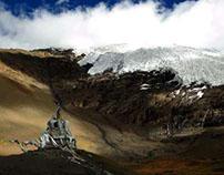 The people follow Tibetan Buddhism