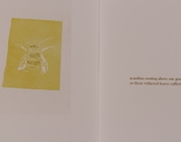 'Insects' Fan-Fold Book