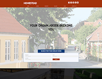 Homestead Real Estate Website Concept