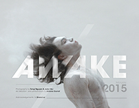 AWAKE, serie 2015