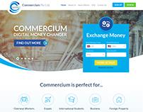 guru 99 design created this financial website design