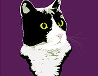 Regal Tuxedo Kitty