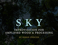 SKY Improvisation for Amplified Wood and Processing