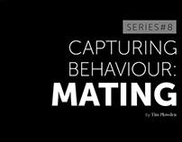 Capturing Behaviour: Mating