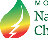 Naturopathic Physicians Initiative logo