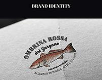 Ittica Caldoli - Brand Identity