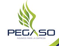 PEGASO / Insumos para la Empresa