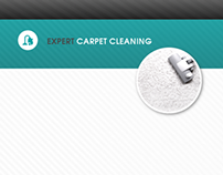 Expert Carpet Cleaning (Option 2)