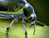 Chrome Beetle